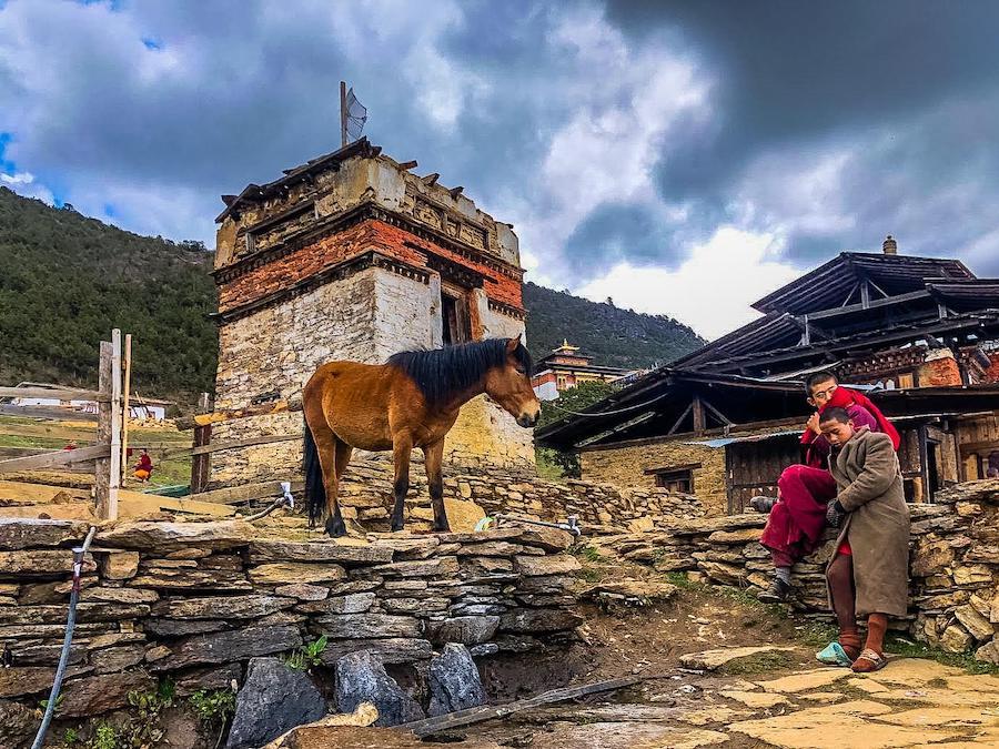 buddyjscy mnisi w bhutanie