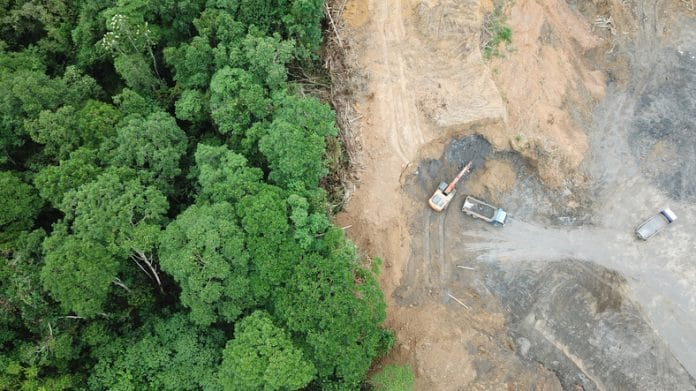 Widok z lotu ptaka na problem środowiskowy wylesiania na Borneo