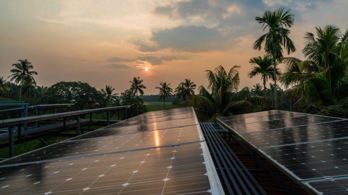 Panele słoneczne na tle zachodu słońca i palm